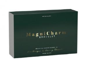 MagniCharm Bracelet recensioni